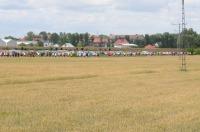 IX Bieg Opolski - 2011 - 3715_foto_opole_112.jpg