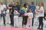 Taekwondo Polish Open Cup 2016 Opole