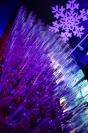 Aqarium Opole - ★ Golden Night ★ Sylwester 2016 - 7595_sylwester_opole_2016_44.jpg