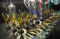 Pole Art Experience - I Międzynarodowe Mistrzostwa Pole Dance  - 7705_pole_art_24opole_003.jpg