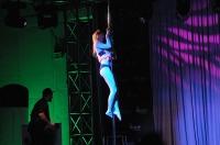 Pole Art Experience - I Międzynarodowe Mistrzostwa Pole Dance  - 7705_pole_art_24opole_039.jpg