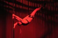 Pole Art Experience - I Międzynarodowe Mistrzostwa Pole Dance  - 7705_pole_art_24opole_133.jpg