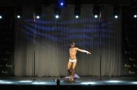 Pole Art Experience - I Międzynarodowe Mistrzostwa Pole Dance  - 7705_pole_art_24opole_137.jpg