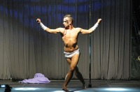 Pole Art Experience - I Międzynarodowe Mistrzostwa Pole Dance  - 7705_pole_art_24opole_139.jpg