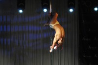 Pole Art Experience - I Międzynarodowe Mistrzostwa Pole Dance  - 7705_pole_art_24opole_154.jpg