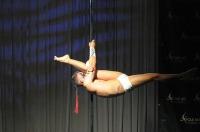 Pole Art Experience - I Międzynarodowe Mistrzostwa Pole Dance  - 7705_pole_art_24opole_156.jpg