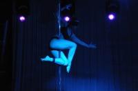 Pole Art Experience - I Międzynarodowe Mistrzostwa Pole Dance  - 7705_pole_art_24opole_159.jpg
