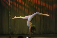 Pole Art Experience - I Międzynarodowe Mistrzostwa Pole Dance  - 7705_pole_art_24opole_197.jpg