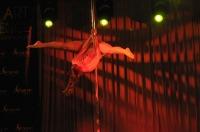 Pole Art Experience - I Międzynarodowe Mistrzostwa Pole Dance  - 7705_pole_art_24opole_206.jpg