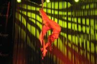 Pole Art Experience - I Międzynarodowe Mistrzostwa Pole Dance  - 7705_pole_art_24opole_215.jpg