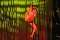 Pole Art Experience - I Międzynarodowe Mistrzostwa Pole Dance  - 7705_pole_art_24opole_227.jpg