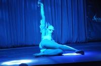 Pole Art Experience - I Międzynarodowe Mistrzostwa Pole Dance  - 7705_pole_art_24opole_246.jpg