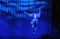 Pole Art Experience - I Międzynarodowe Mistrzostwa Pole Dance  - 7705_pole_art_24opole_262.jpg