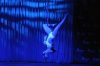 Pole Art Experience - I Międzynarodowe Mistrzostwa Pole Dance  - 7705_pole_art_24opole_263.jpg
