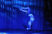 Pole Art Experience - I Międzynarodowe Mistrzostwa Pole Dance  - 7705_pole_art_24opole_265.jpg