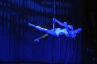Pole Art Experience - I Międzynarodowe Mistrzostwa Pole Dance  - 7705_pole_art_24opole_275.jpg