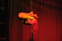 Pole Art Experience - I Międzynarodowe Mistrzostwa Pole Dance  - 7705_pole_art_24opole_309.jpg