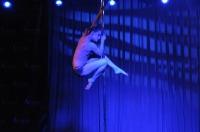 Pole Art Experience - I Międzynarodowe Mistrzostwa Pole Dance  - 7705_pole_art_24opole_380.jpg