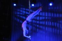 Pole Art Experience - I Międzynarodowe Mistrzostwa Pole Dance  - 7705_pole_art_24opole_383.jpg