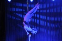 Pole Art Experience - I Międzynarodowe Mistrzostwa Pole Dance  - 7705_pole_art_24opole_385.jpg