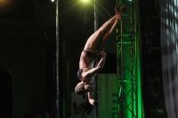 Pole Art Experience - I Międzynarodowe Mistrzostwa Pole Dance  - 7705_pole_art_24opole_399.jpg