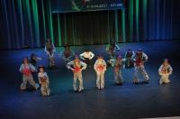 Tańcowadła 2017 - XXII Ogólnopolski Przegląd Zespołów Tanecznych w Ozimku. - 7727_24opole_foto_191.jpg