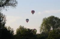 Fiesta balonowa Opole Balloon Challenge 2017 - 7793_foto_24opole_203.jpg