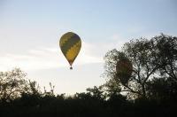 Fiesta balonowa Opole Balloon Challenge 2017 - 7793_foto_24opole_265.jpg
