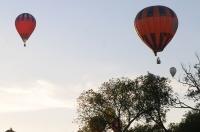 Fiesta balonowa Opole Balloon Challenge 2017 - 7793_foto_24opole_275.jpg