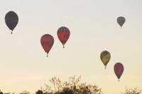Fiesta balonowa Opole Balloon Challenge 2017 - 7793_foto_24opole_295.jpg
