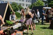 XV Opolski Festiwal Nauki - Piknik