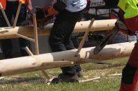 Międzynarodowe Zawody Drwali w Bobrowej 2017 - 7875_opole_24opole_245.jpg