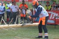 Międzynarodowe Zawody Drwali w Bobrowej 2017 - 7875_opole_24opole_278.jpg