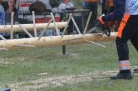 Międzynarodowe Zawody Drwali w Bobrowej 2017 - 7875_opole_24opole_286.jpg