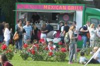 Food Fest - \