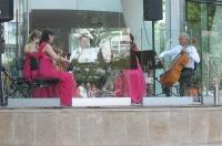 Koncert Promenadowy Filharmonii Opolskiej - Muzyka Filmowa - 7888_fo_24opole_045.jpg
