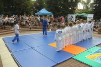 Festyn Plenerowy \
