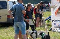 I Opolski Charytatywny Dogtrekking - 8142_foto_24opole_044.jpg