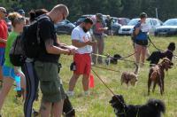 I Opolski Charytatywny Dogtrekking - 8142_foto_24opole_065.jpg