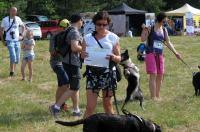 I Opolski Charytatywny Dogtrekking - 8142_foto_24opole_069.jpg