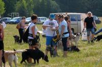 I Opolski Charytatywny Dogtrekking - 8142_foto_24opole_074.jpg