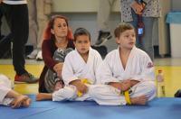 II Opolski Integracyjny Festiwal Judo - 8208_foto_24opole_148.jpg