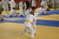 II Opolski Integracyjny Festiwal Judo - 8208_foto_24opole_204.jpg