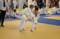 II Opolski Integracyjny Festiwal Judo - 8208_foto_24opole_206.jpg