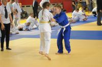 II Opolski Integracyjny Festiwal Judo - 8208_foto_24opole_228.jpg