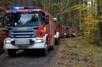 Ćwiczenia Straży Pożarnej w Nadleśnictwie Kup - 8218_foto_24opole_113.jpg
