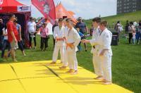 IV Dzień Sportu w Opolu - Poznaj Sportowe Opole - 8339_foto_24pole_222.jpg