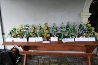 VIII Wojewódzki Bieg Przełajowy o Puchar Borsuka - 8405_foto_24opole_194.jpg