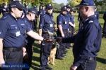 Opolski policjant najlepszym przewodnikiem psa w kraju