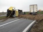 Buraki zablokowały drogę krajową 94 pod Brzegiem